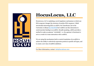 hocuslocus-screenshot